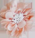 Fleurs - position 1