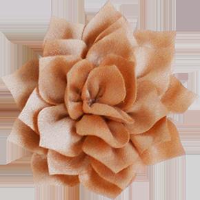 Fleurs - position 3