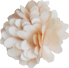 Fleurs - position 2