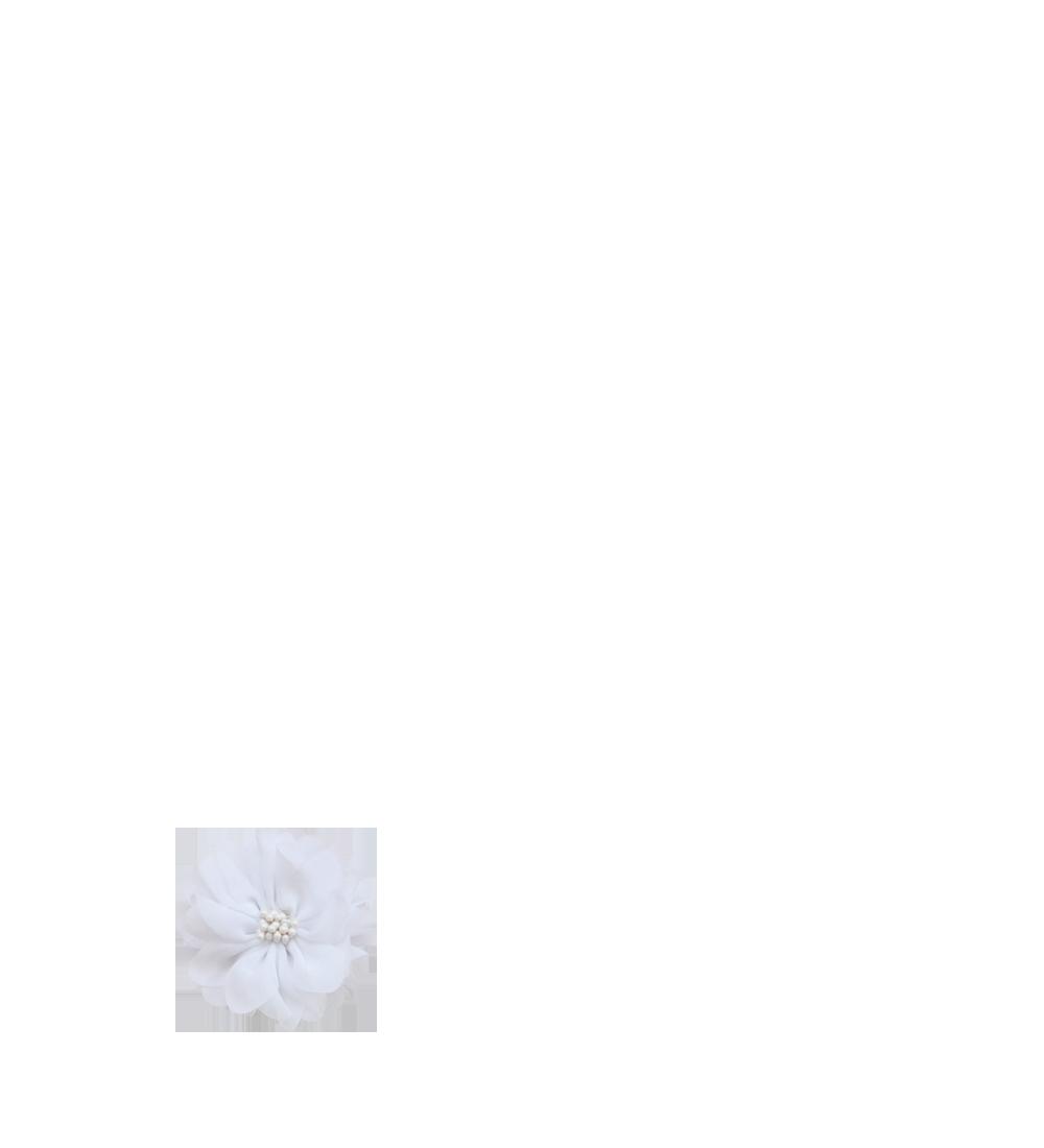 fleur blanche pistils