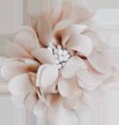 fleur pistils beige