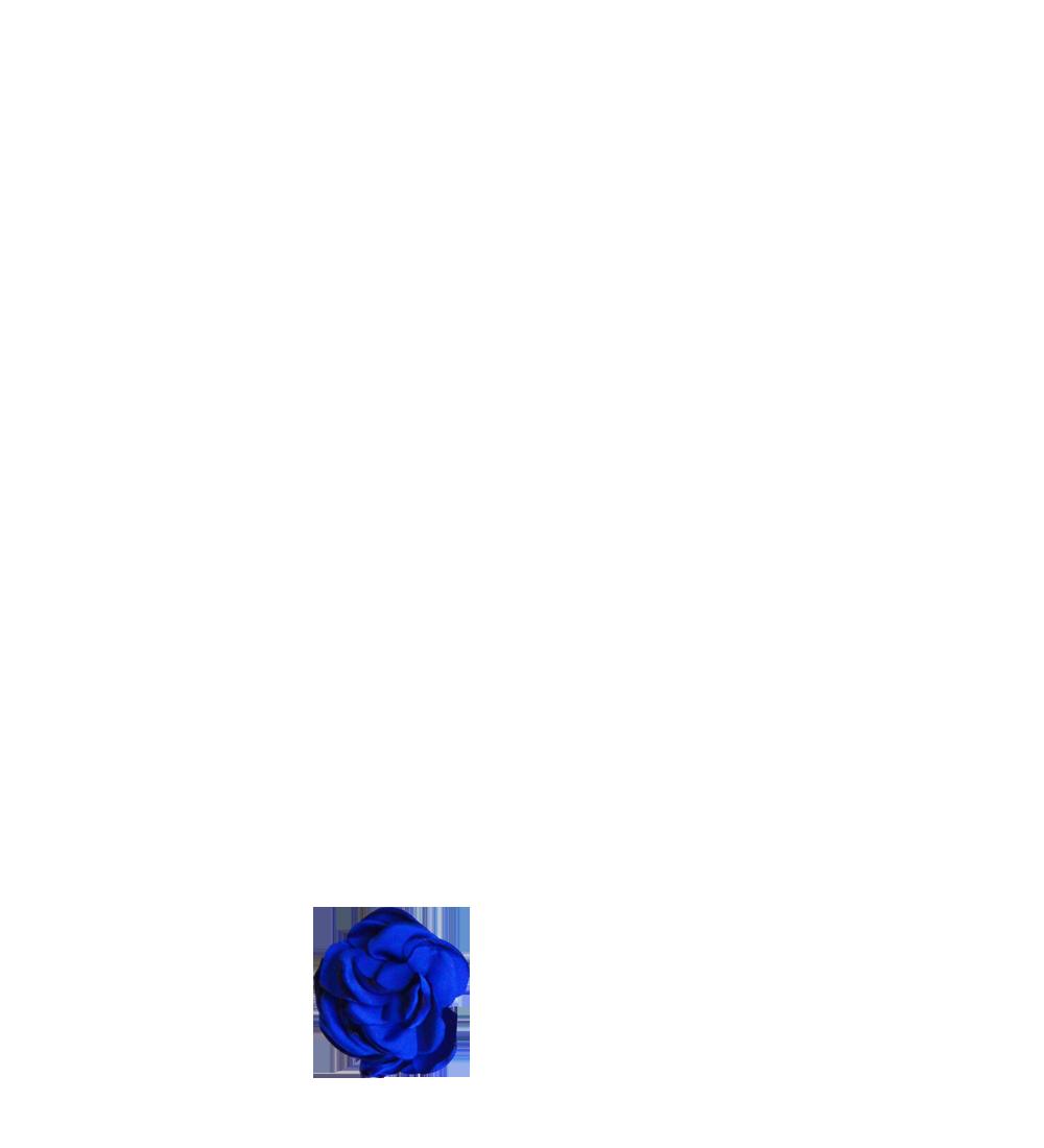 fleur bleu roi