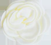 fleur crème