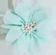 Fleur vert d'eau