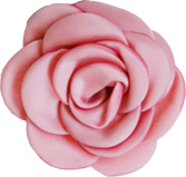 fleurs vieux rose M