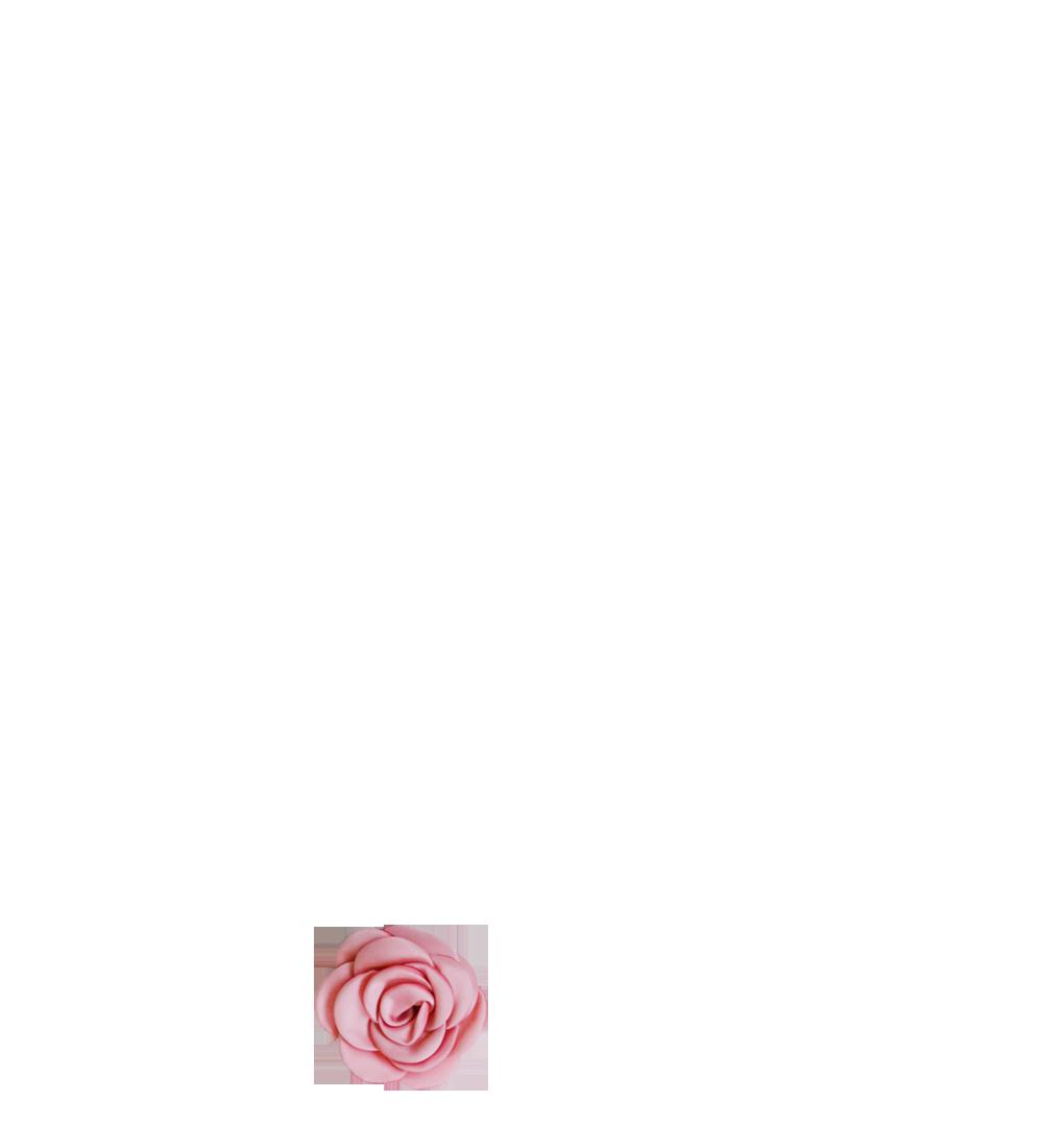 fleur vieux rose