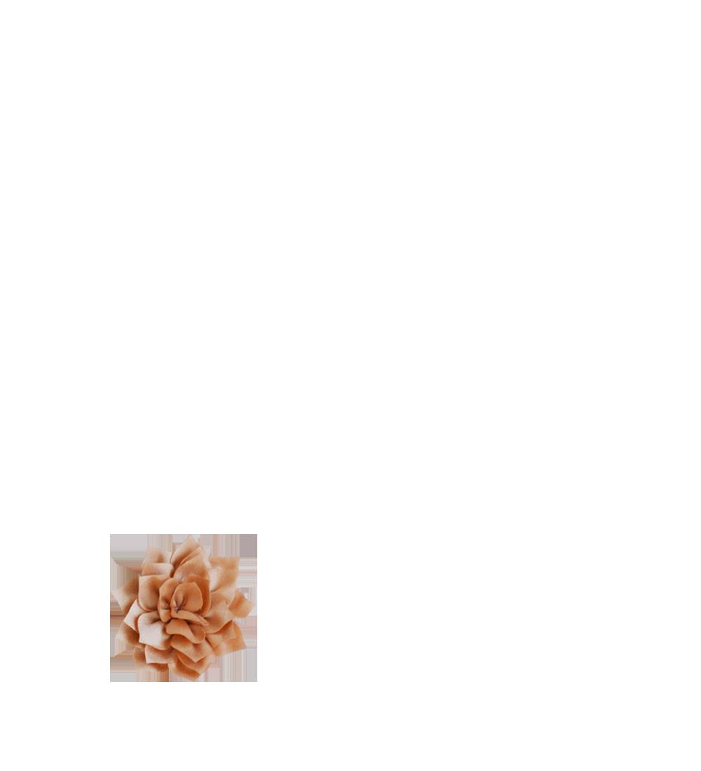 Lotus Cappuccino