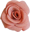 rose vieux rose S