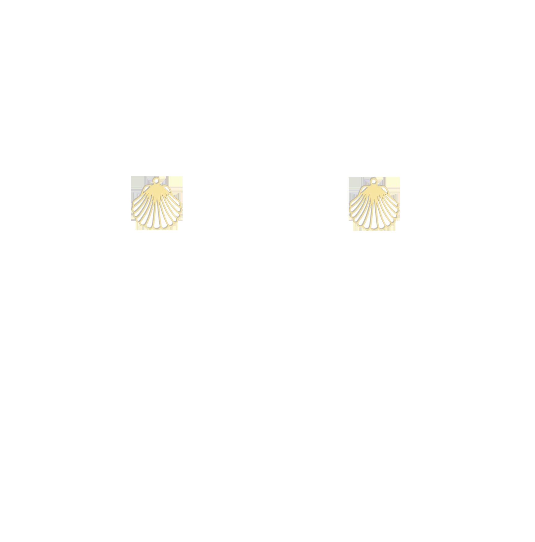 coquillage doré