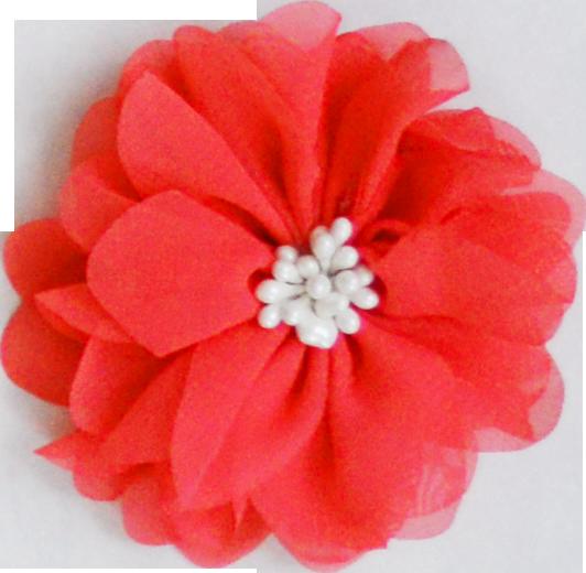 Fleur pistil corail