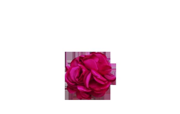 fleur fuschia