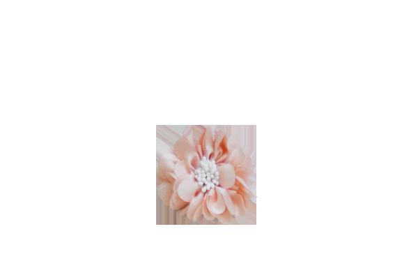 fleur pistils rose poudré