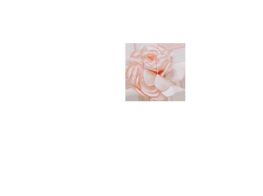 Fleur rose poudrée