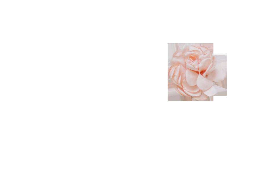 Fleur rose pourdrée