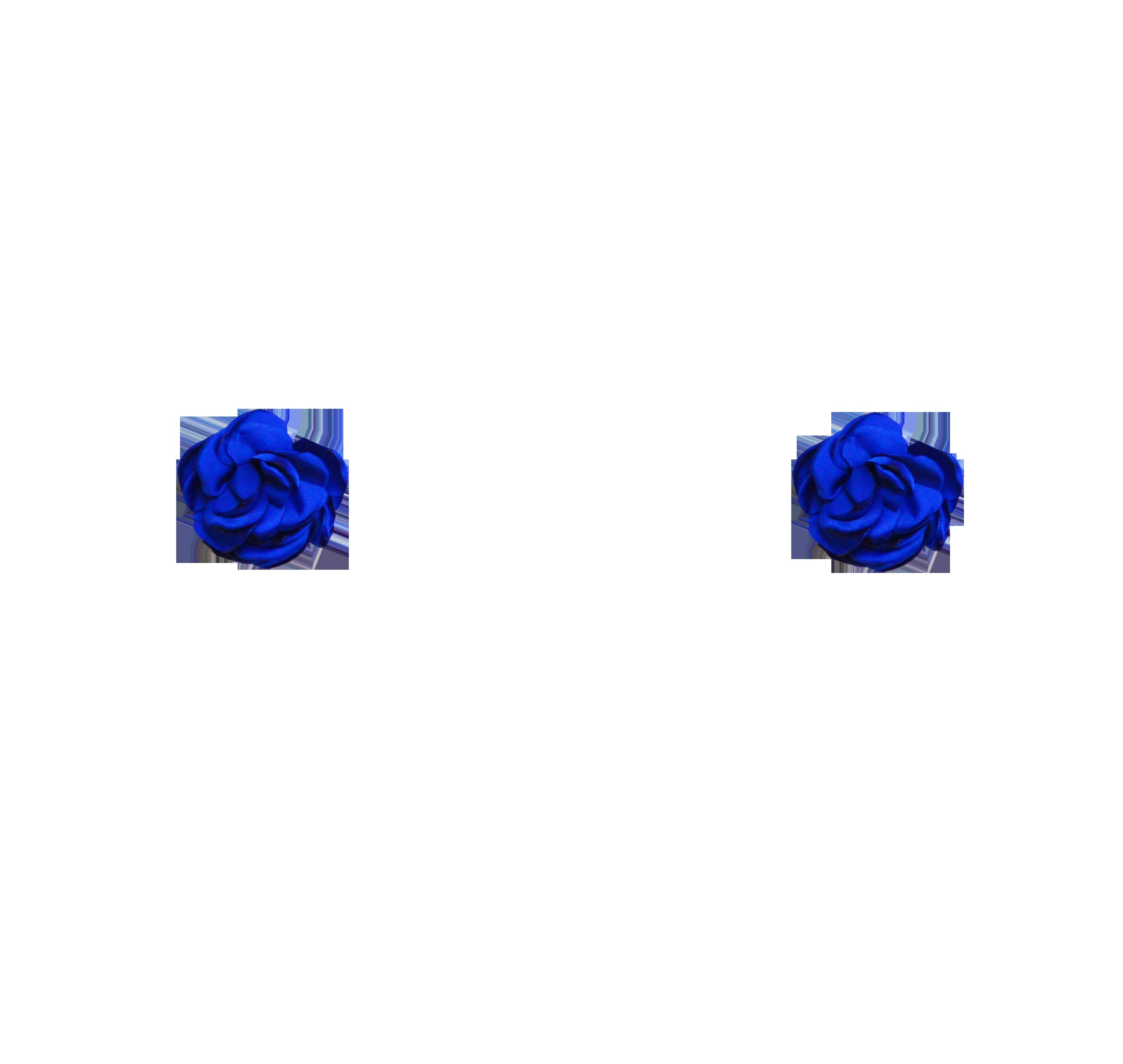 fleurs bleu roi