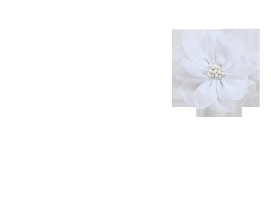 Fleur pistil blanc