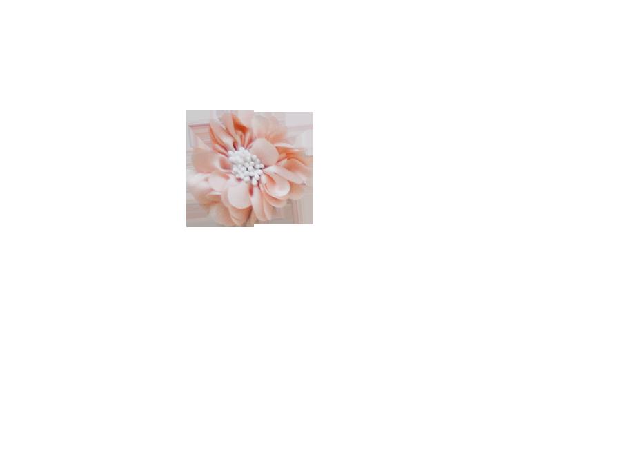 Fleur pistil rose poudrée