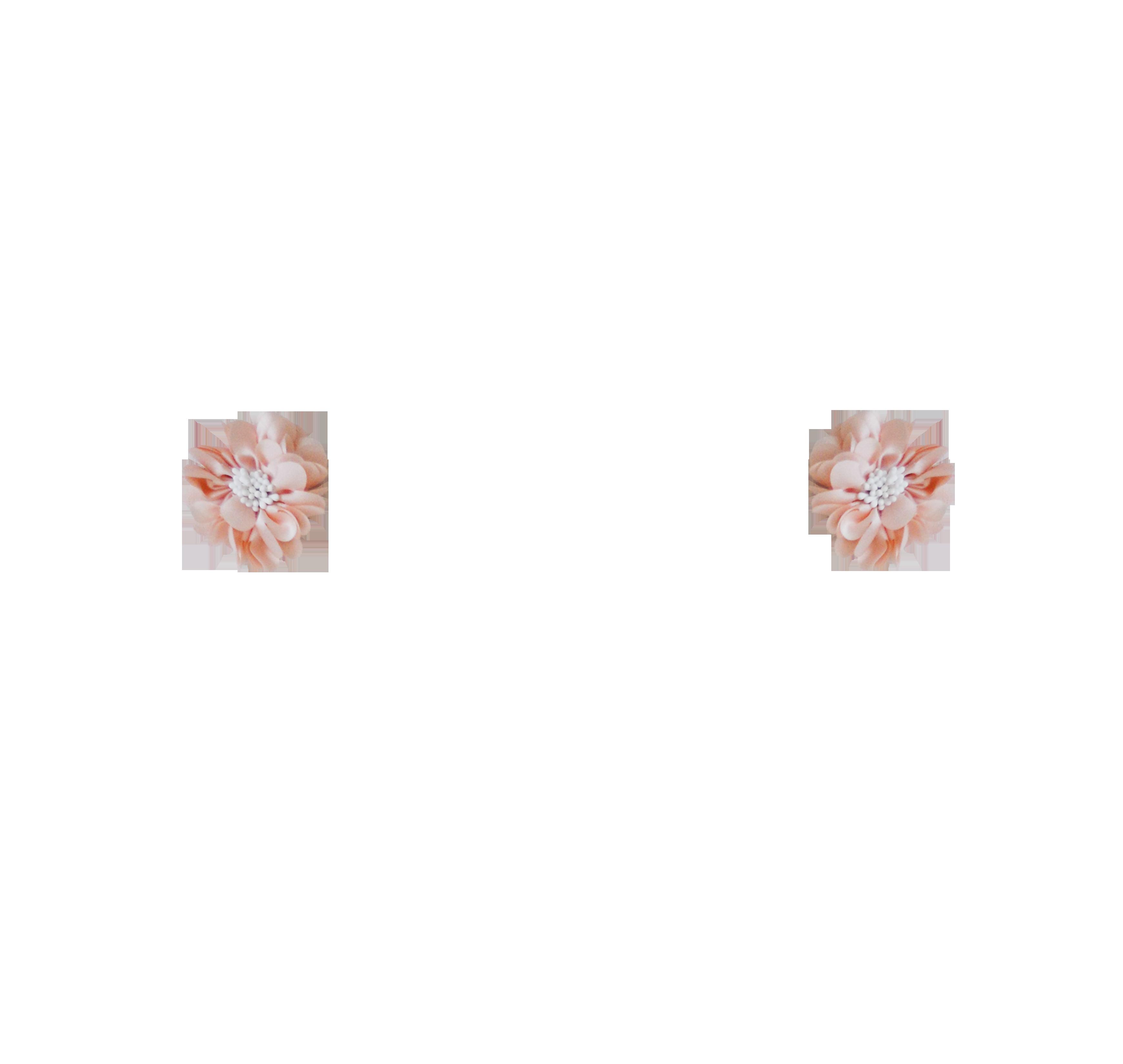 fleurs pistils rose poudré