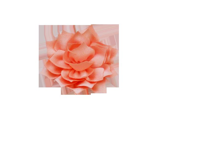 Fleur lotus corail