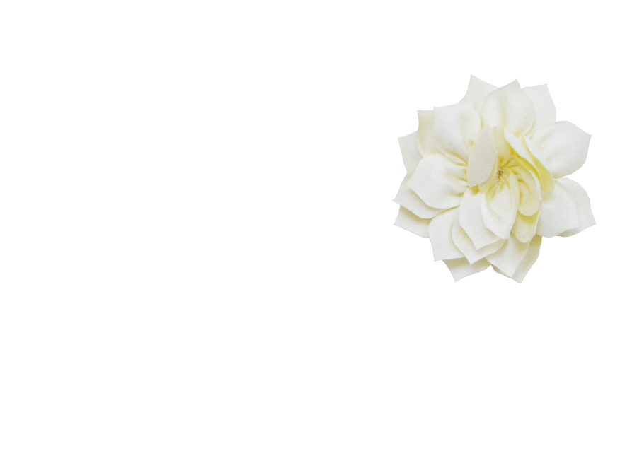 Fleur lotus vanille