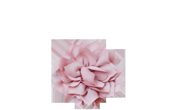 lotus vieux rose