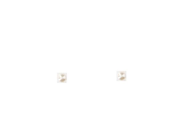 Perles nacrées Swarovski 6 mm