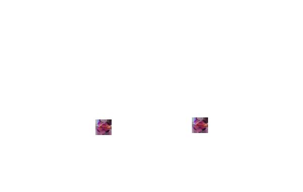Perles prunes