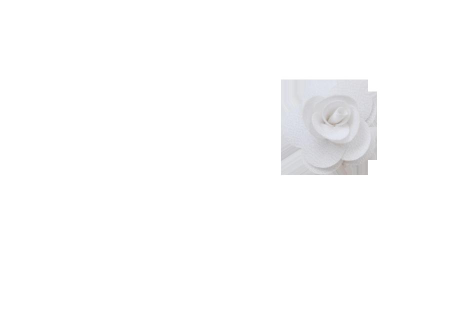 Fleur rose blanche