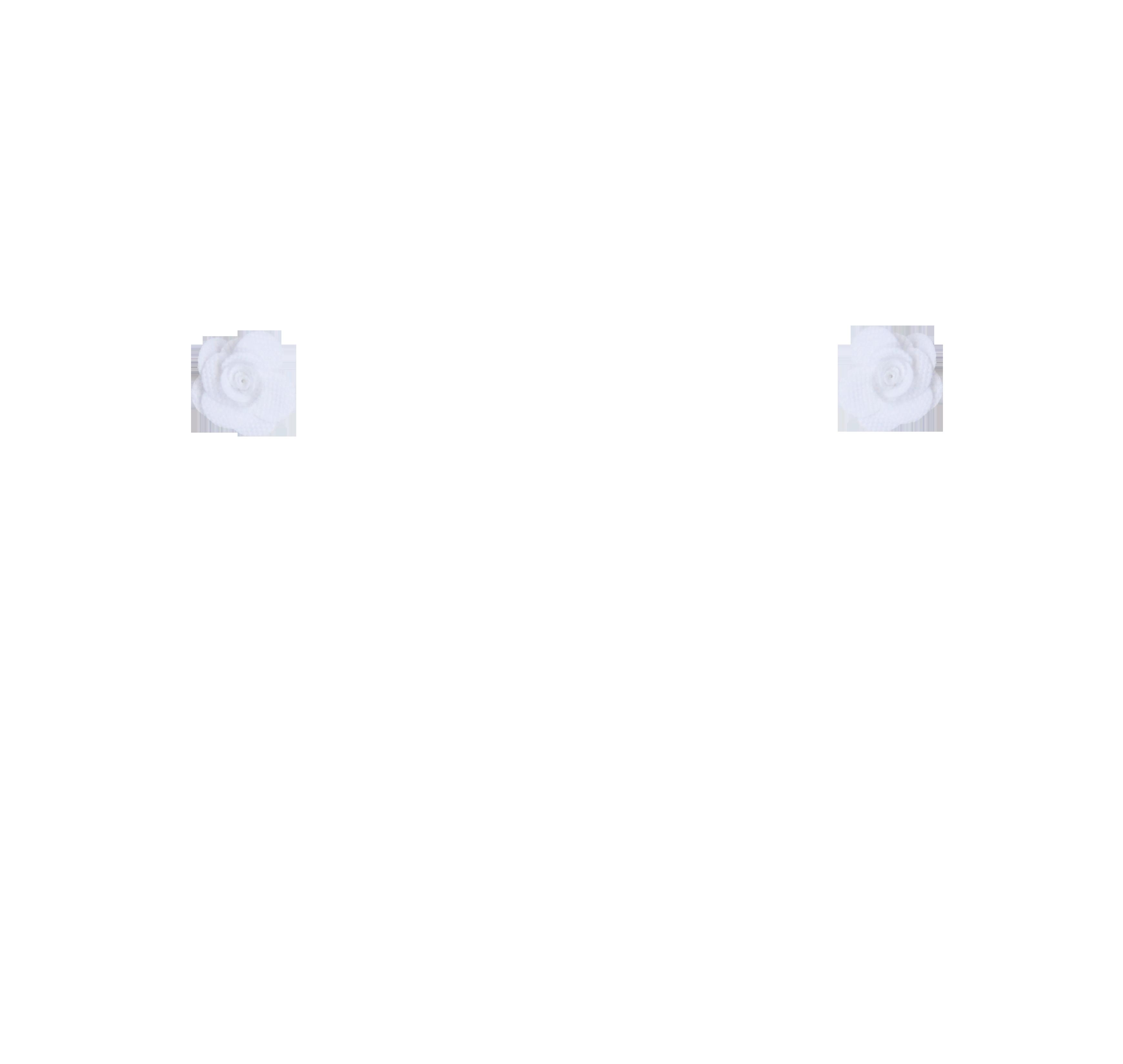 mini rose blanche