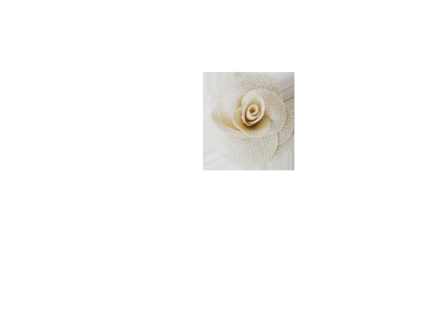 Fleur rose champagne