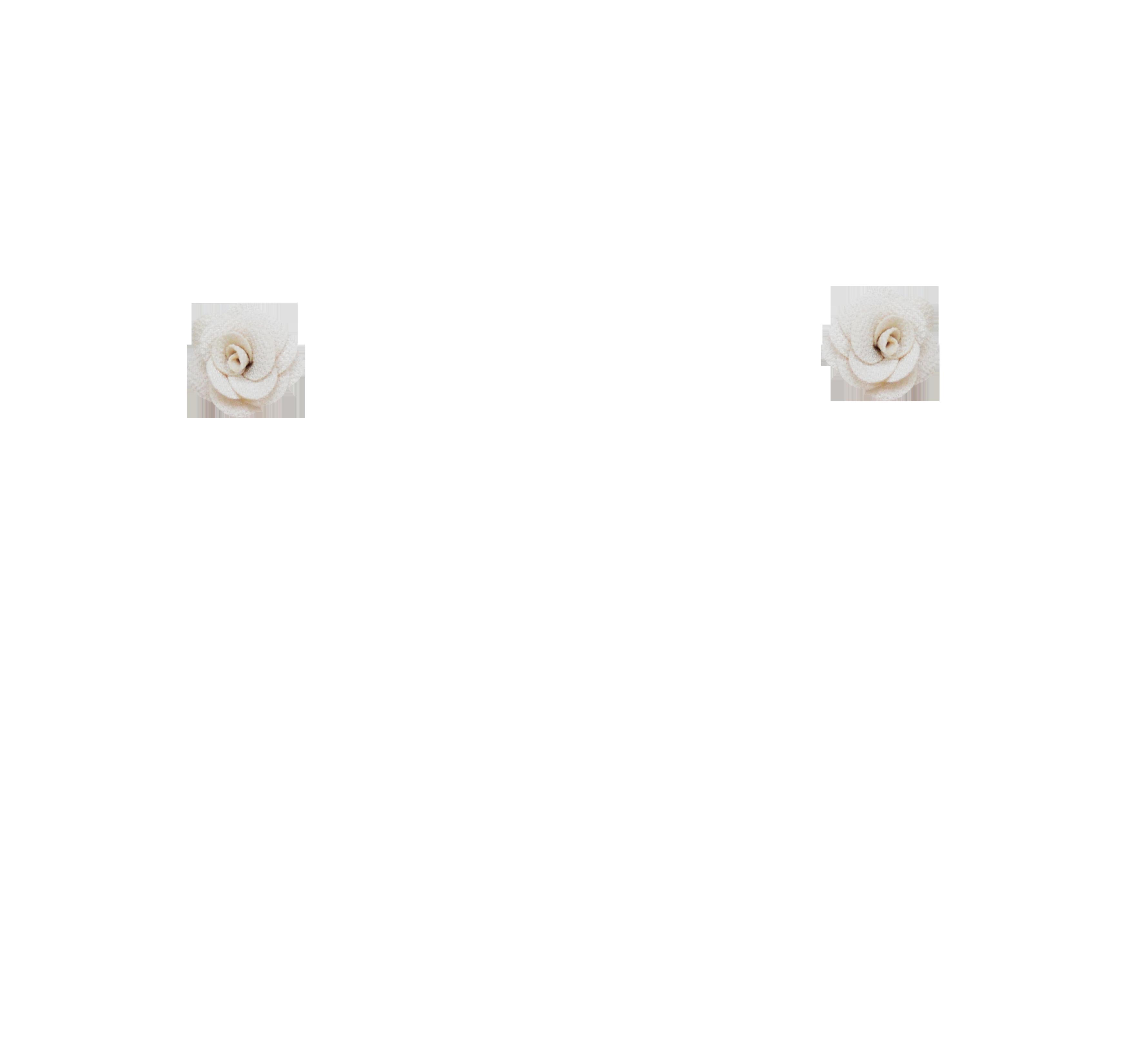 mini rose champagne