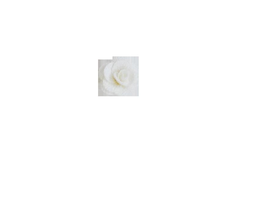 Fleur rose ivoire