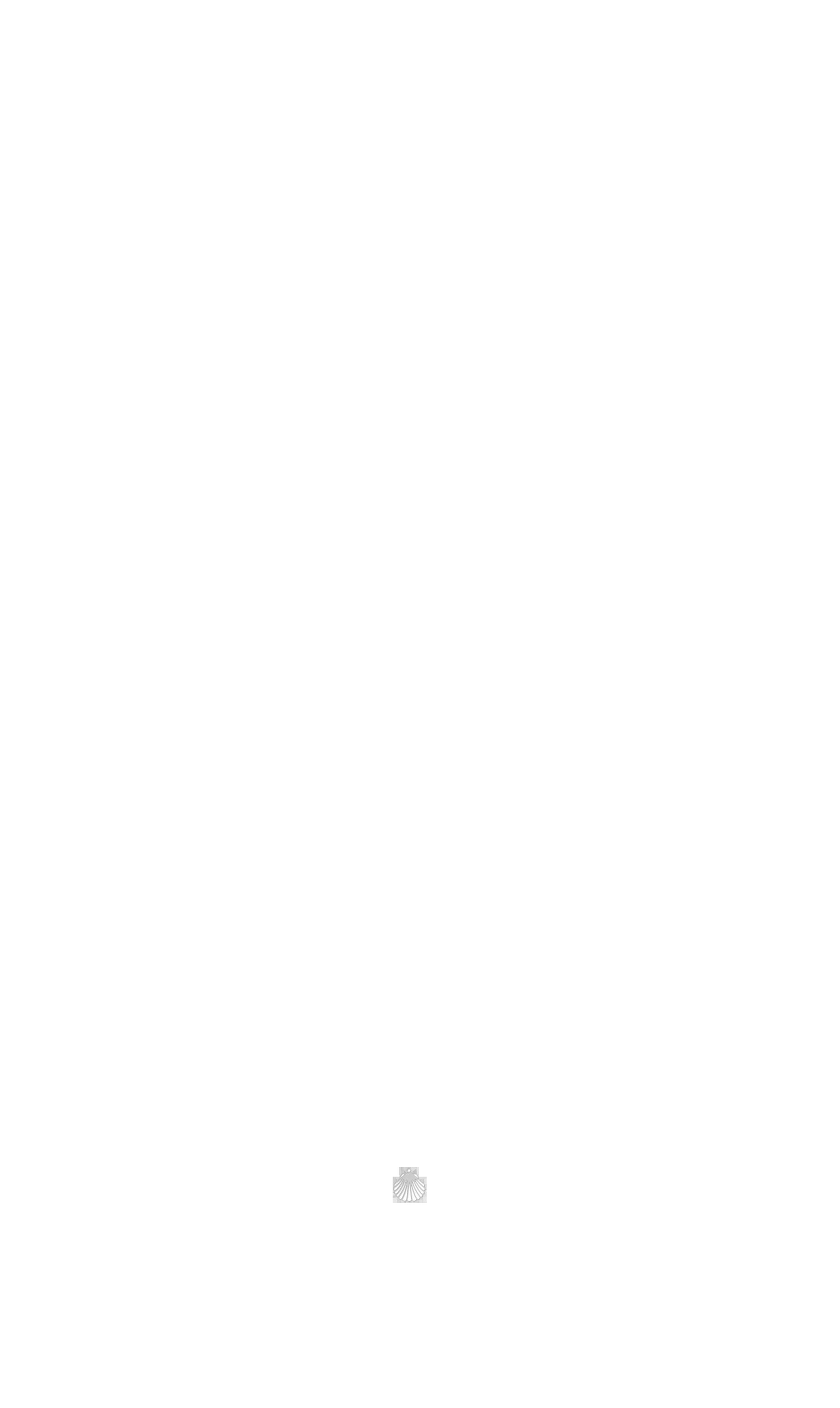 coquillage bas