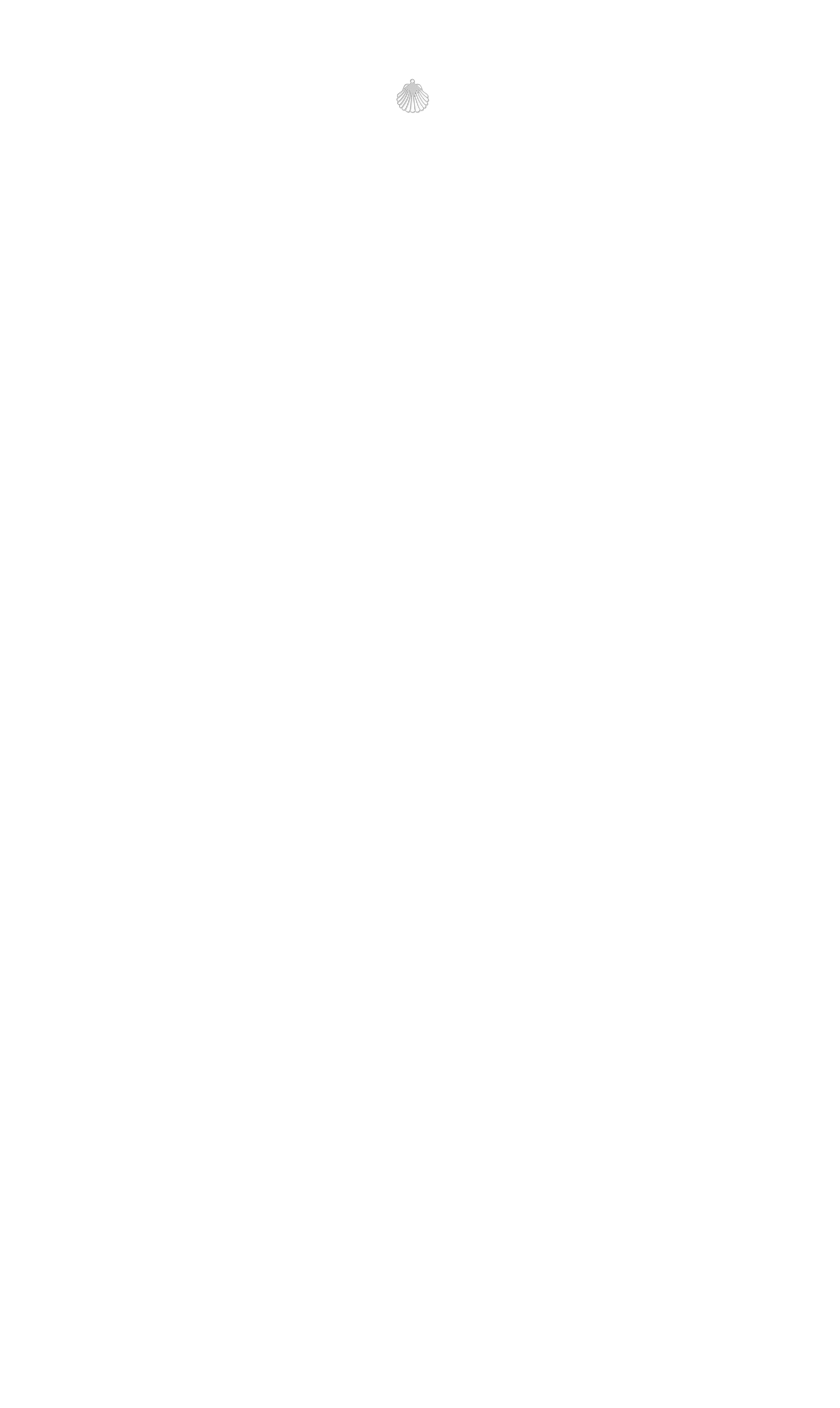 coquillage haut