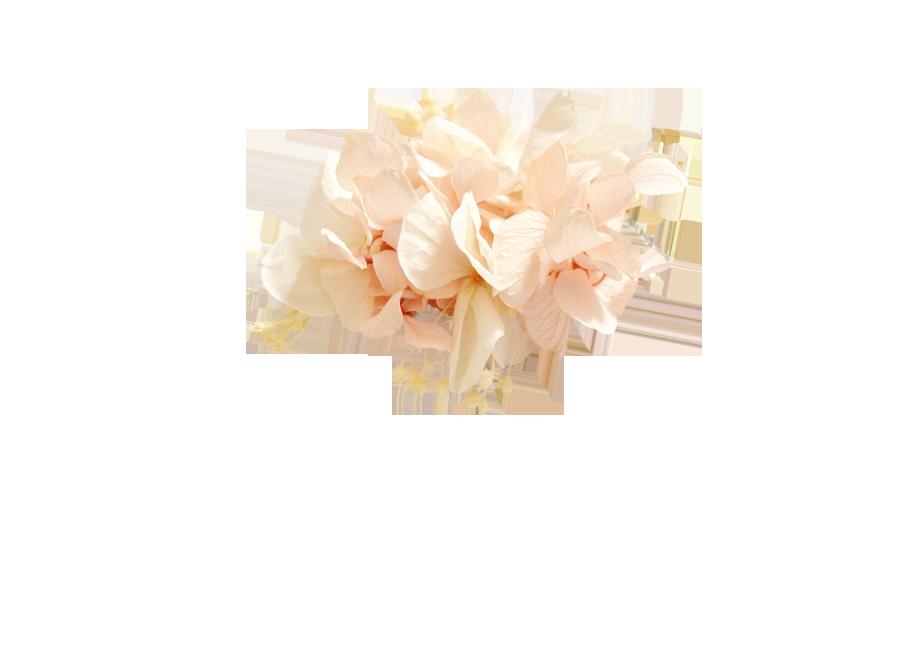 fleurs éternelles rose pâle