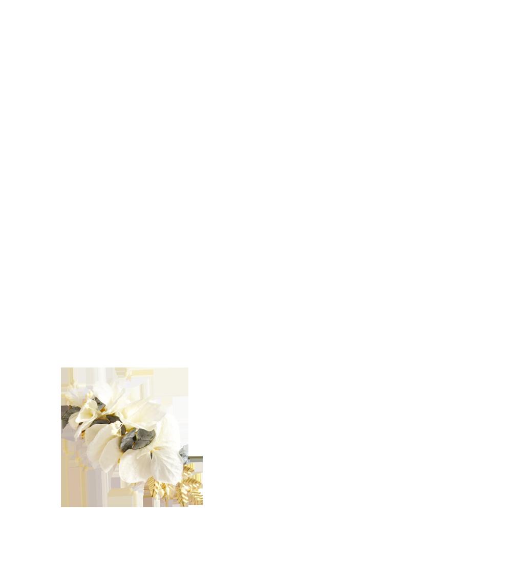 fleurs éternelles ivoire et eucalyptus