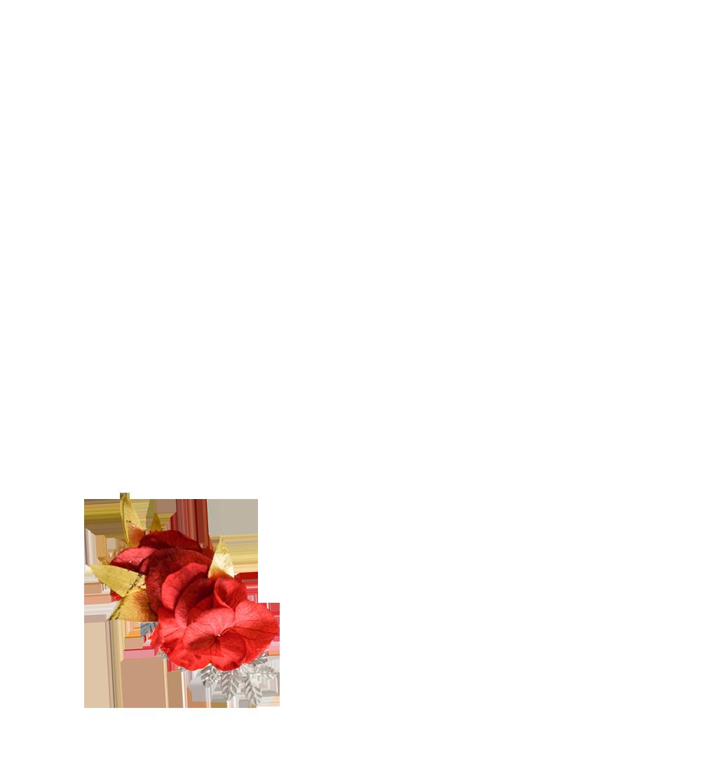 fleurs éternelles rouge