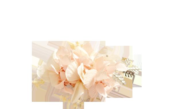 hortensias rose pâle ARGENT