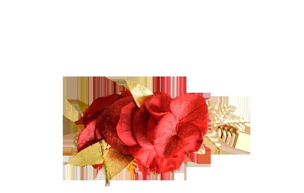 hortensias rouges et or