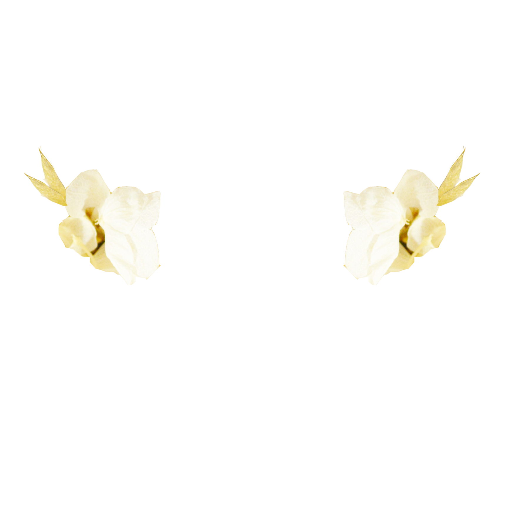 eucalyptus DORE + hortensias IVOIRE