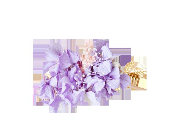 hortensias stabilisées violettes DORE