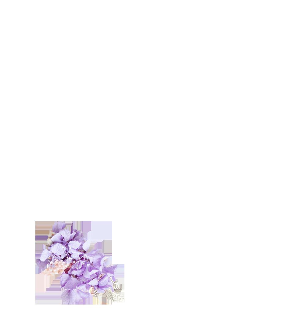 hortensias stabilisée violettes et gypsophile rose