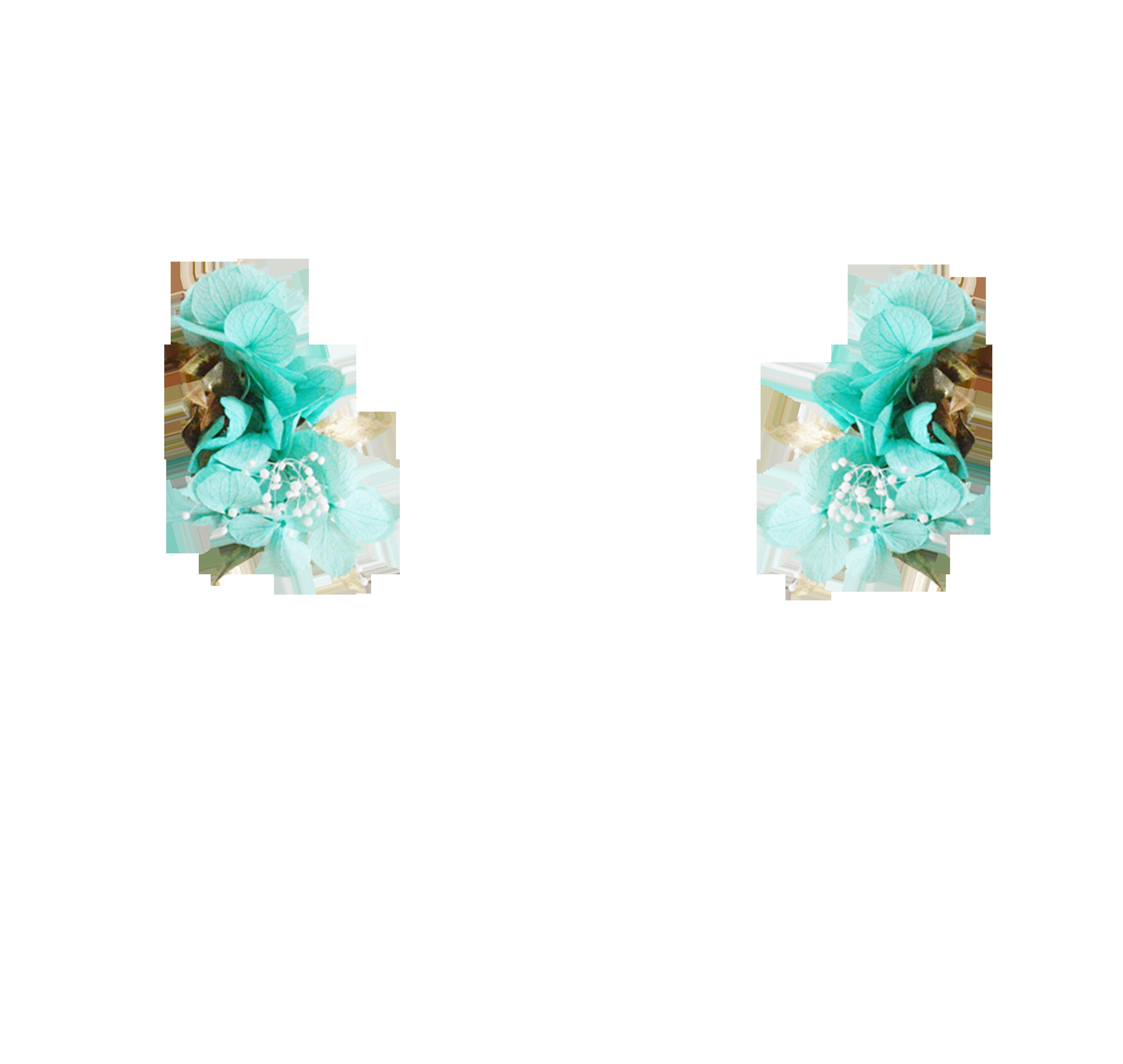 hortensia turquoise